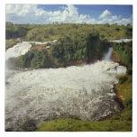 África, Uganda, las cataratas Murchison NP. El esp Azulejo Cuadrado Grande
