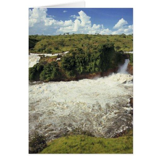 África, Uganda, las cataratas Murchison NP. El esp Tarjeta De Felicitación