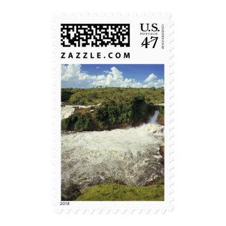 África, Uganda, las cataratas Murchison NP. El Sello