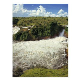 África, Uganda, las cataratas Murchison NP. El Postal