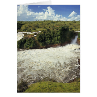 Africa, Uganda, Murchison Falls NP. The frothy Greeting Cards