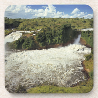 Africa, Uganda, Murchison Falls NP. The frothy Drink Coaster