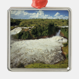 Africa, Uganda, Murchison Falls NP. The frothy Christmas Ornaments
