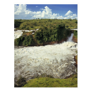 Africa, Uganda, Murchison Falls NP. The frothy Postcard