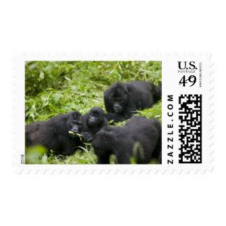 África, Uganda, nacional impenetrable 7 de Bwindi Sellos Postales