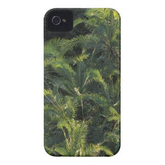 Africa, Zambia, Mosi-Oa-Tunya National Park, iPhone 4 Case-Mate Case
