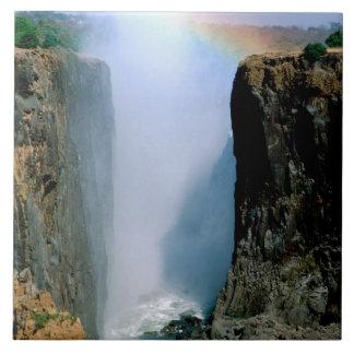 África, Zambia, parque nacional de las cataratas V Azulejo Cuadrado Grande