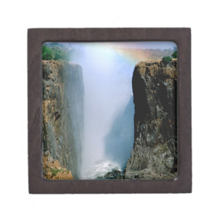 Africa, Zambia, Victoria Falls National Park. Gift Box