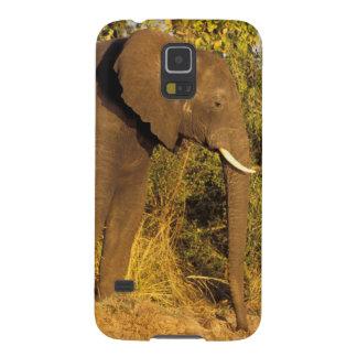 África, Zimbabwe, parque nacional de las cataratas Carcasas De Galaxy S5