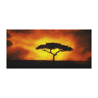 African Acacia Landscape Warm Glow Canvas Print