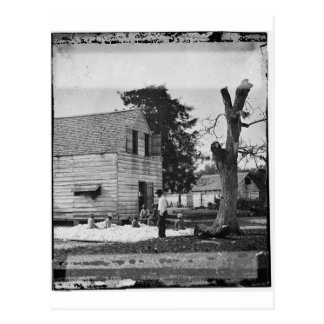African Americans preparing cotton circa 1862 Postcard