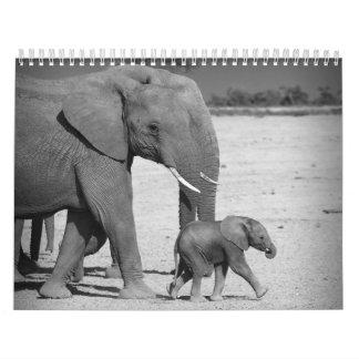 African animals Wall Calendar