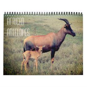 african antelopes 2021 calendar