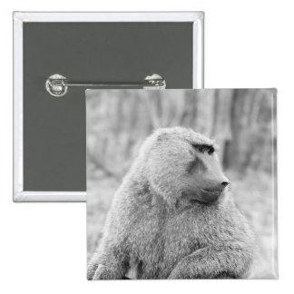 African baboon button