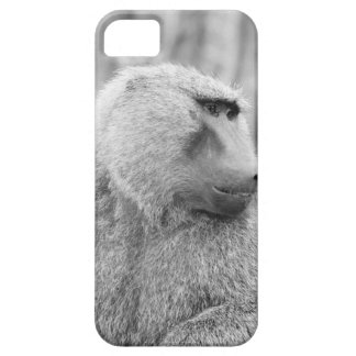 African baboon iPhone SE/5/5s case