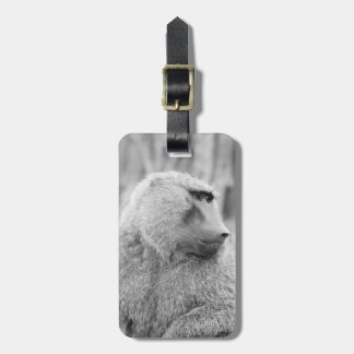 African baboon luggage tag