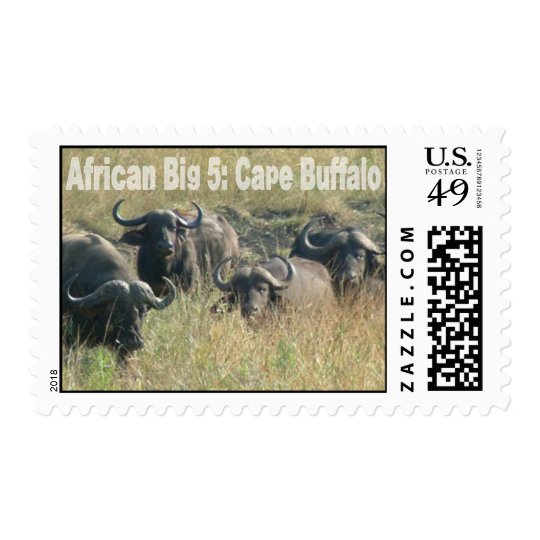 African Big Five: Cape Buffalo Postage