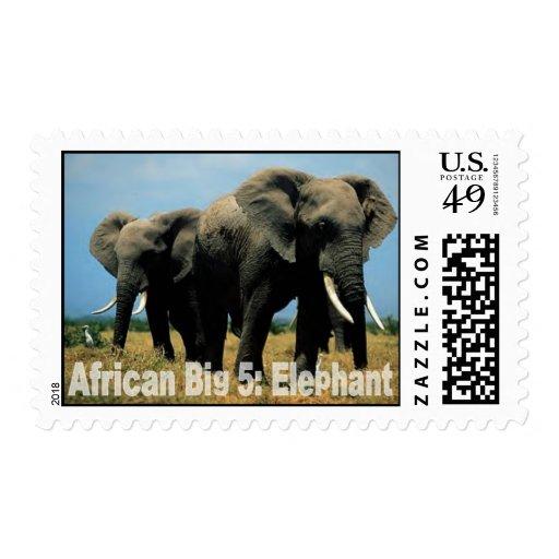 African Big Five: Elephant Postage Stamp