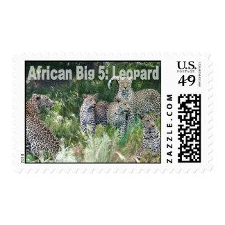 African Big Five: Leopard Postage