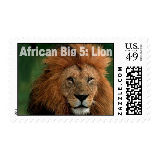 African Big Five: Lion Stamps