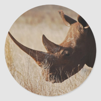 African black rhino with big horns classic round sticker