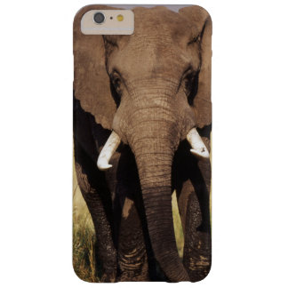 African Bush Elephant Barely There iPhone 6 Plus Case