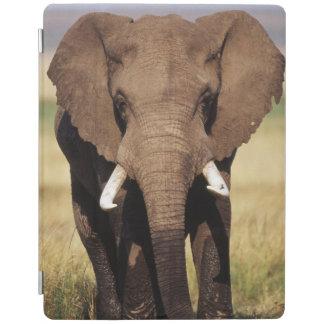 African Bush Elephant iPad Smart Cover
