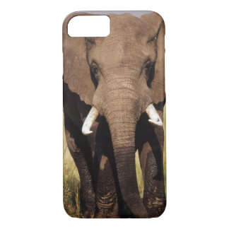 African Bush Elephant iPhone 8/7 Case