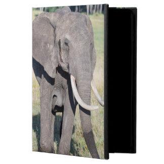 African Bush Elephant (Loxodonta Africana) 2 Cover For iPad Air