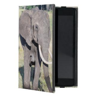African Bush Elephant (Loxodonta Africana) 2 Cover For iPad Mini