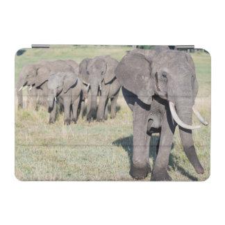 African Bush Elephant (Loxodonta Africana) 2 iPad Mini Cover