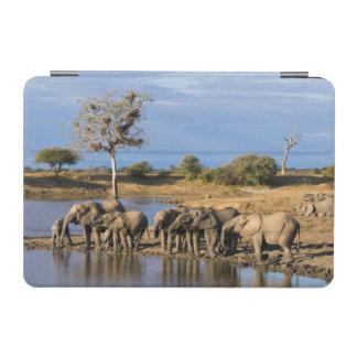 African Bush Elephant (Loxodonta Africana) Herd iPad Mini Cover