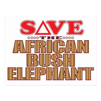 African Bush Elephant Save Postcard
