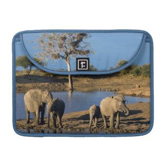 African Bush Elephants (Loxodonta Africana) Sleeve For MacBook Pro