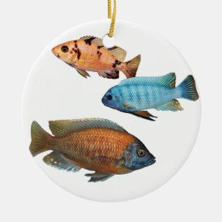 African Cichlids Ceramic Ornament