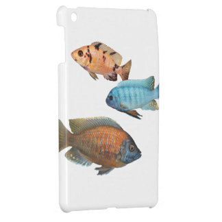 African Cichlids Cover For The iPad Mini
