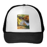 African Collage 1 Mesh Hats