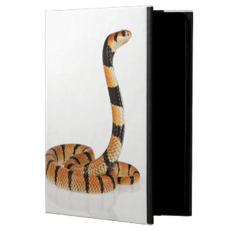 African coral snake (Aspidelaps lubricus) iPad Air Cases