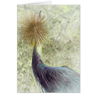 african crowned crane - invert card