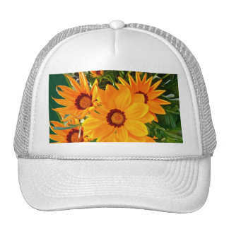 African Daisies Hat