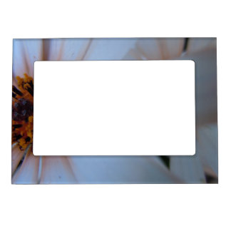 African Daisies I Magnetic Photo Frame
