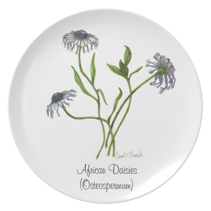 African Daisies Plate
