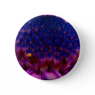 African Daisy Blossom Round Button button