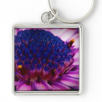 African Daisy Blossom Square Keychain keychain