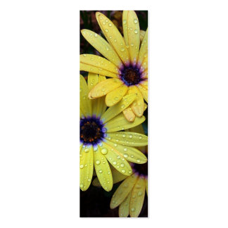 African Daisy Bookmark Double-Sided Mini Business Cards (Pack Of 20)