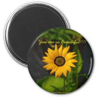 African Daisy-Circle Magnet magnet
