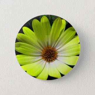 African Daisy Fluorescent Yellow Button