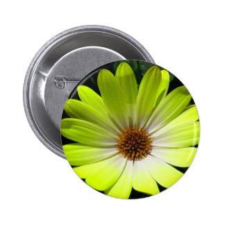 African Daisy Fluorescent Yellow Button