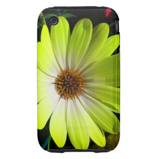 African Daisy Fluorescent Yellow iPhone 3 Case