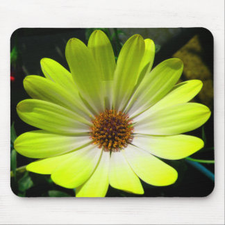 African Daisy Fluorescent Yellow Mousepad